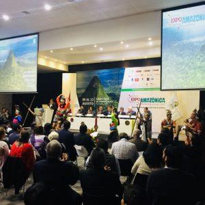 EXPO AMAZO 1